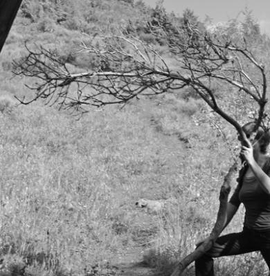 arbre-cap-d-ail