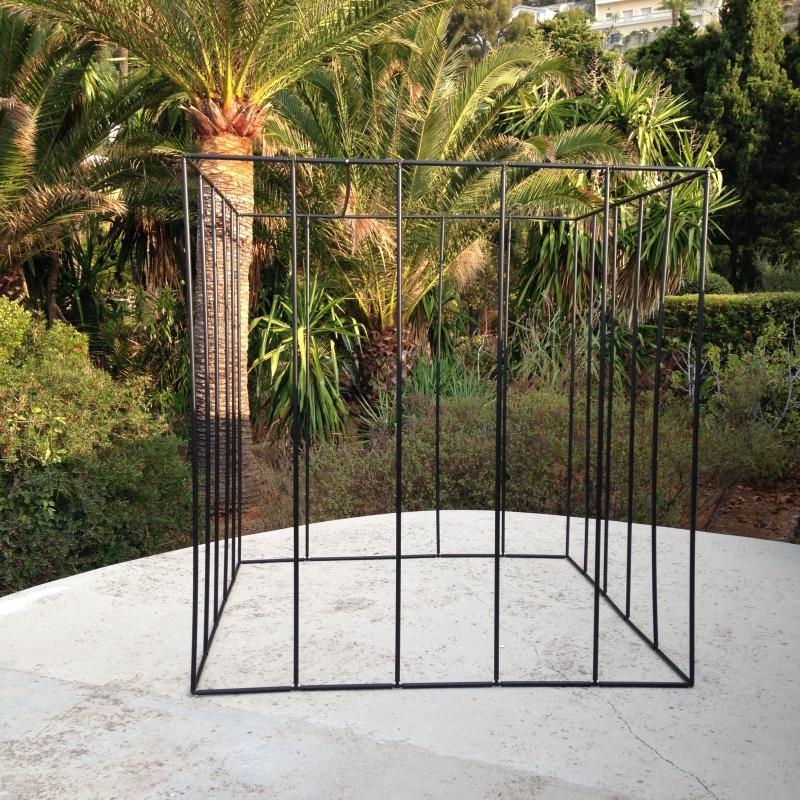cage-vide-2